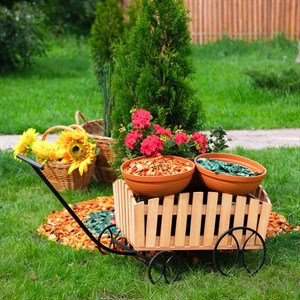 Садовая тележка за 2700 руб.