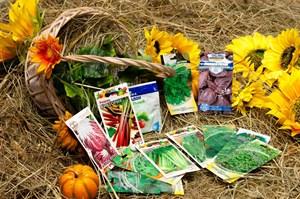 Набор семян витаминная зелень