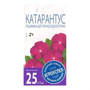 Катарантус Пацифика Дип Орхид 7шт