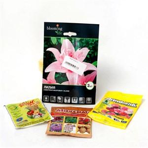 Лилия махровая розовая