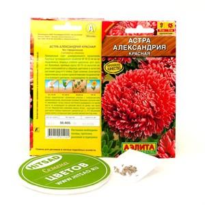 Семена Астра красная