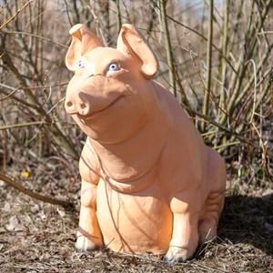 Свинка U08337