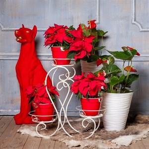 Подставка для цветов кованая