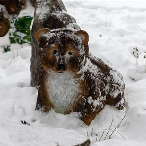 Медвежонок большой