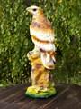 Сокол на камне - фото 14563