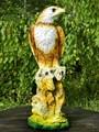 Сокол на камне - фото 14564