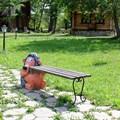 Дачная скамейка Еж с кирпичем - фото 14582
