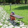Дачная скамейка Еж с кирпичем - фото 14583