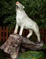 Волк на дереве - фото 15354