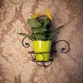 Подставка настенная на 1 цветок 15-421 - фото 17246