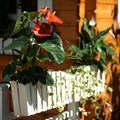 Балконное кашпо 59-602