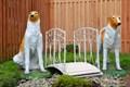 Комплект садовой мебели за 42870 руб.