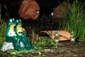 Мостик с лягушками