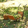 Тележка садовая за 3870 руб.