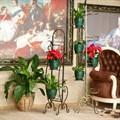 Подставки цветов напольные фото