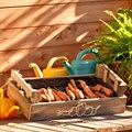 Ящик для хранения моркови