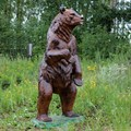 Медведь за 22500 руб.