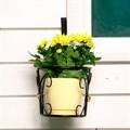 Настенная кованая подставка для цветов