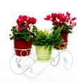Подставка на три цветка