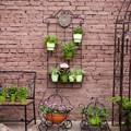 Садовая шпалера 57-803