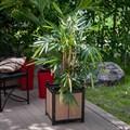 Кадка для растений за 4200 руб.