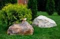 Крышка люка Камень с птичкой - фото 35850