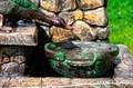Дачный фонтан утки