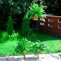Садовая подставка 51-124