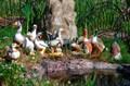 Фигуры для сада птицы