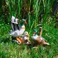 Фигурки для сада утки