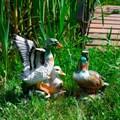 Утки для сада