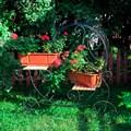 Кованая цветочница - фото 37008