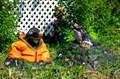 Крышка люка Крот в куртке - фото 37287