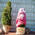 Чехол для укрытия растений