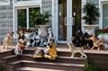 Фигуры собак садовые