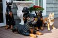 Фигуры собак из стеклопластика