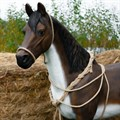 Фигура конь из стеклопластика