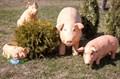 Фигуры для сада свинки