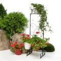 Декоративное садовое ограждение