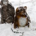 Медвежонок большой - фото 52480