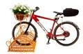 Стоянка для велосипедов - фото 56036